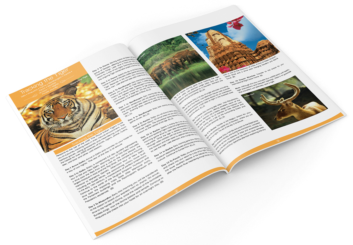 Discover India - 7